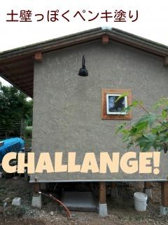 コケ屋根の小屋。ペンキ塗りで土壁風にできないかチャレンジ!