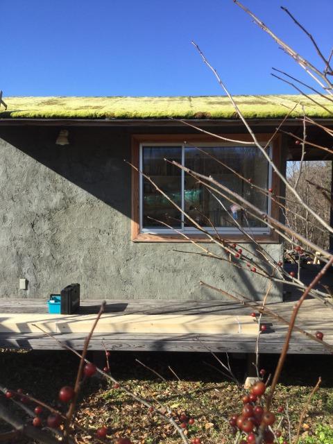 コケ屋根の小屋作り、ボクのチャレンジ。モヤモヤの日々。