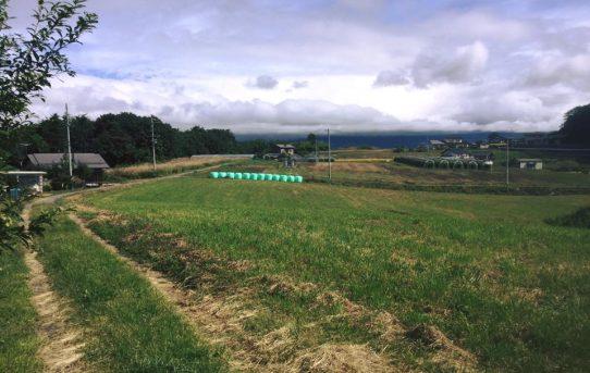 草原を望む丘で新たな工事がスタートします。