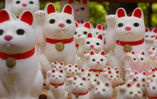 開運グッズのパイオニア!招き猫トリビア