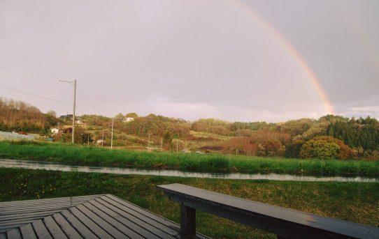 丘の上に掛かる虹