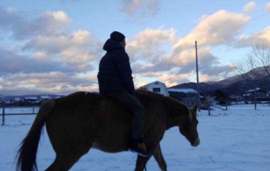 馬と徳さんと僕。遠野市QMCHへ導かれた話。