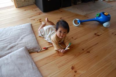安全な空気の家。なめても安心な床。